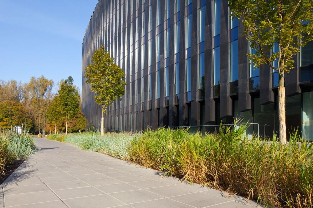 szara płyta chodnikowa przed budynkiem